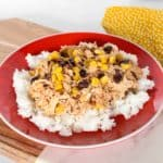 Tex-Mex chicken on a bed of rice.