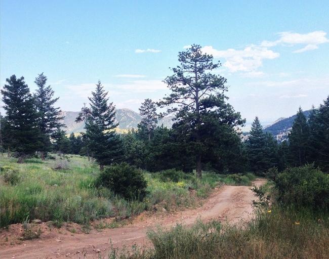 Camping at Winiger Ridge