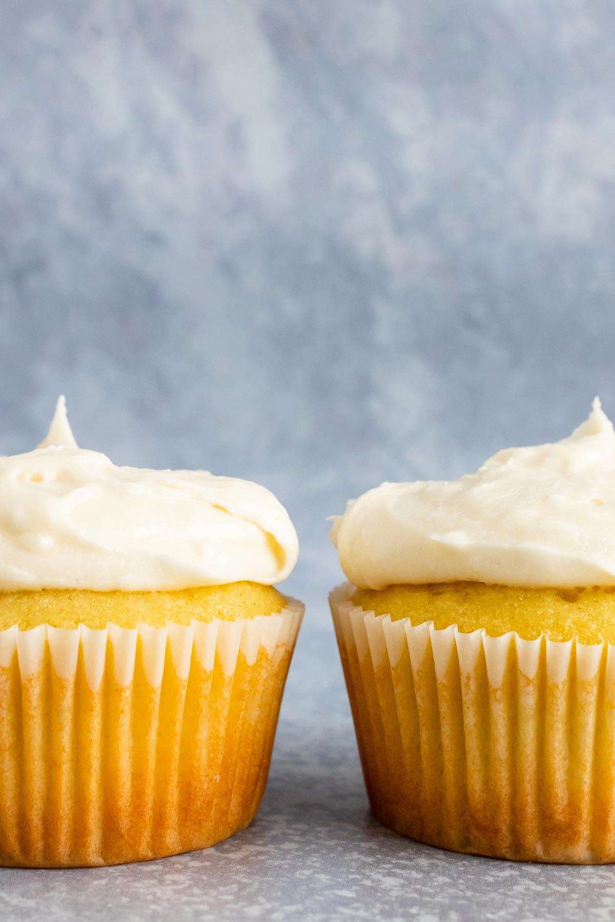 Two vanilla cupcakes side by side with vanilla frosting.