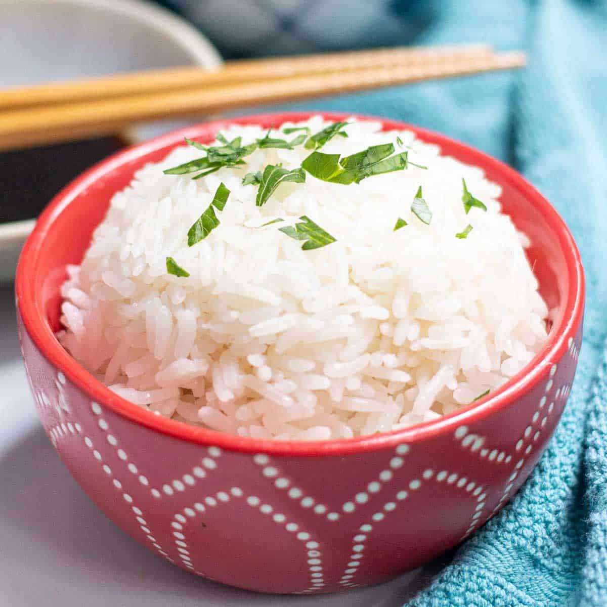 Instant Pot Jasmine Rice.