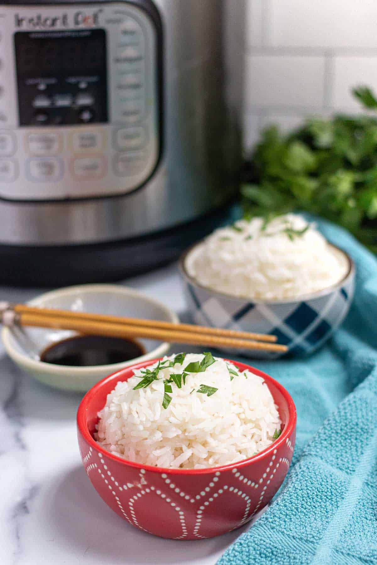 Instant Pot Jasmine Rice in a small bowl with a side of soy sauce.